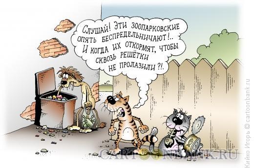 Карикатура: Зонопарк, Кийко Игорь