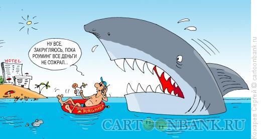 Карикатура: роуминг, Кокарев Сергей