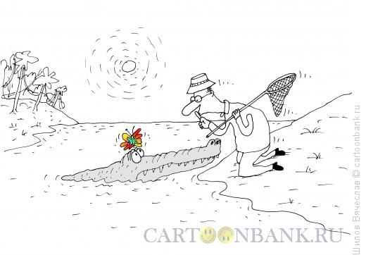 Карикатура: Бабочка и крокодил, Шилов Вячеслав