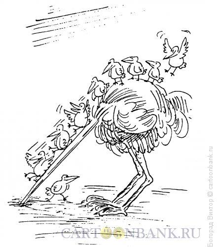Карикатура: Страх и радость, Богорад Виктор