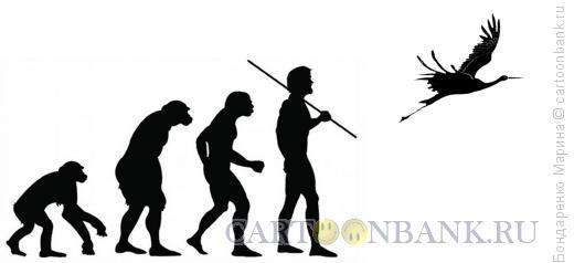 Карикатура: Эволюция, Бондаренко Марина