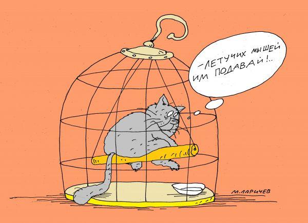 Картинки по запросу карикатуры про котов картинки