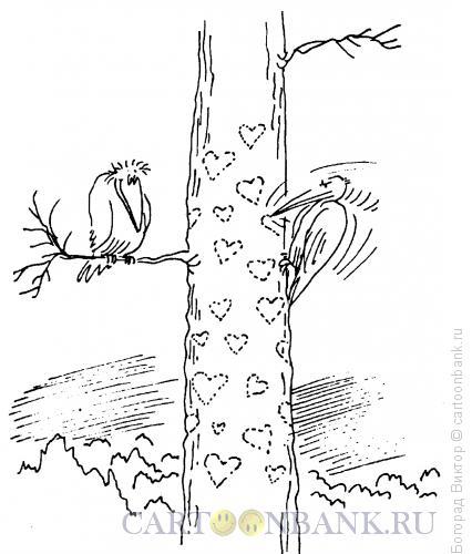 Карикатура: Дятел, Богорад Виктор