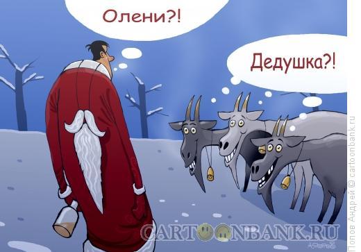 Карикатура: Первое января, Попов Андрей