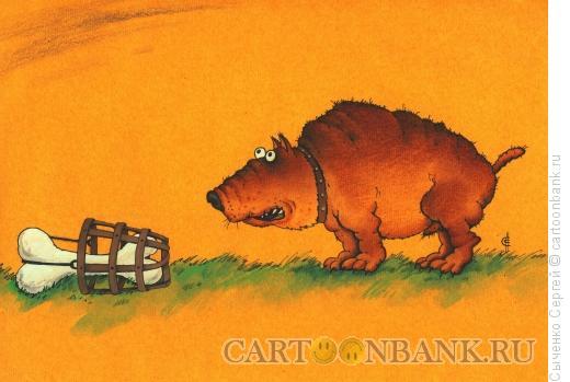 Карикатура: Намордник, Сыченко Сергей