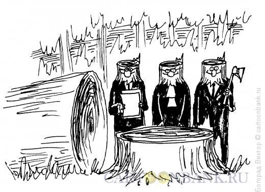 Карикатура: Пеньки, Богорад Виктор