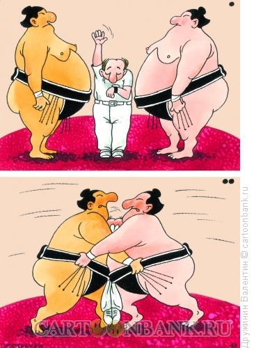 Карикатура: Сумо, Дружинин Валентин