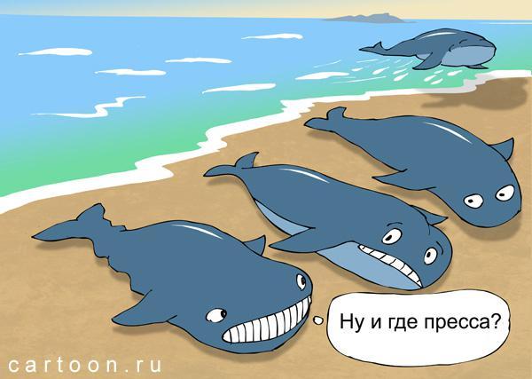 Карикатура: Где пресса?, Зудин Александр
