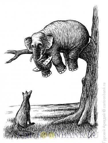 Карикатура: слон на дереве, Гурский Аркадий