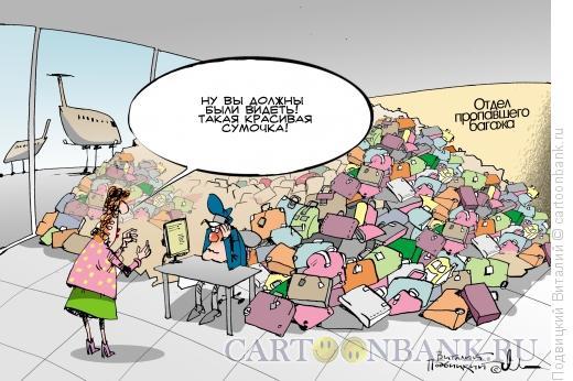 Карикатура: пропавший багаж, Подвицкий Виталий
