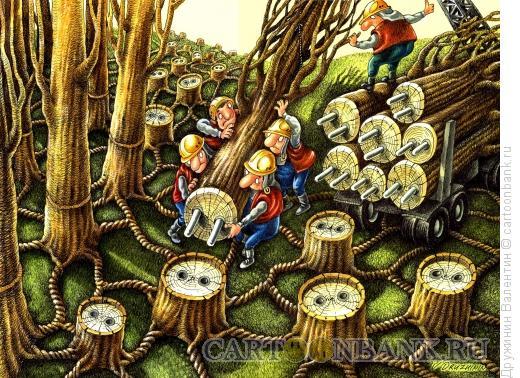 Карикатура: Деревья-розетки, Дружинин Валентин