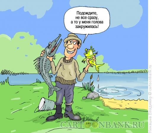 Карикатура: туча куча обещаний, Ненашев Владимир