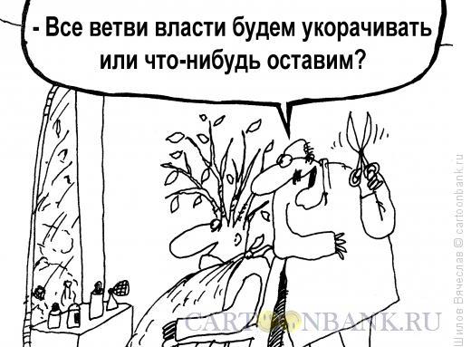 Карикатура: Ветви власти, Шилов Вячеслав