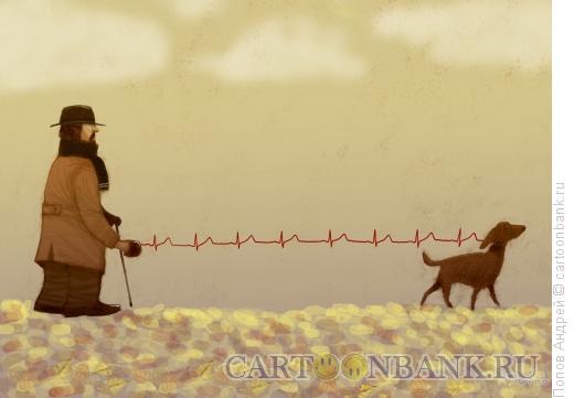 Карикатура: Сердечная привязанность, Попов Андрей