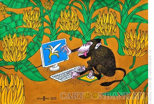 Карикатура: Виртуальный банан, Смаль Олег