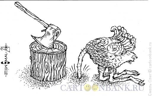 Карикатура: Страусиная позиция, Смаль Олег