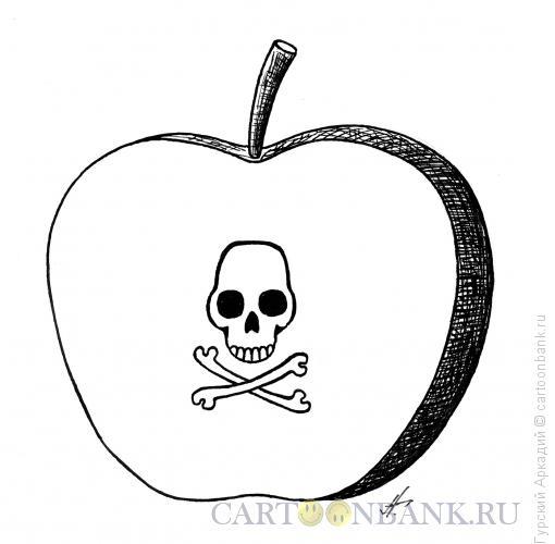Карикатура: яблоко в разрезе, Гурский Аркадий