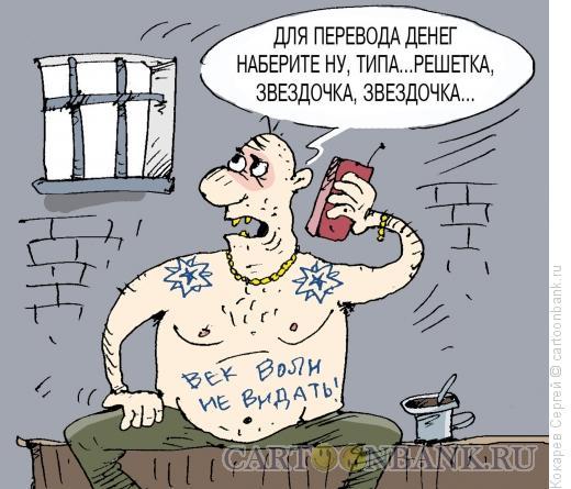 Карикатура: мобила в законе, Кокарев Сергей