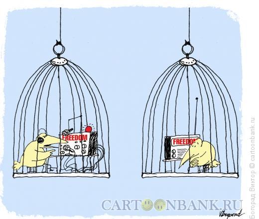 """Карикатура: Радиостанция """"Свобода"""", Богорад Виктор"""