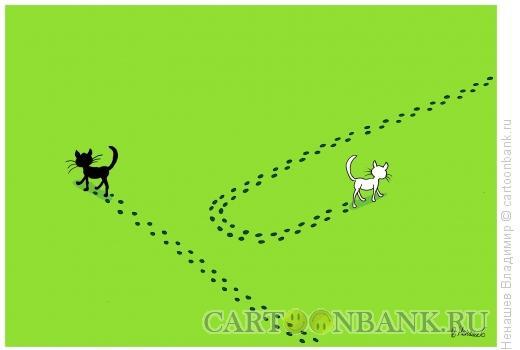 Карикатура: черный кот, Ненашев Владимир