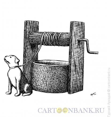 Карикатура: собака и колодец, Гурский Аркадий