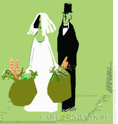Карикатура: Хозяйственная свадьба, Бондаренко Марина