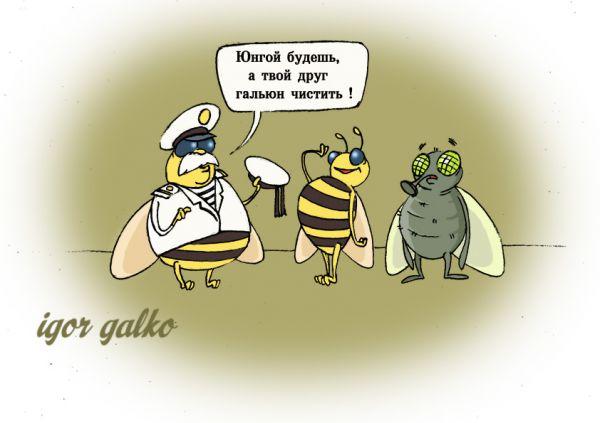 Карикатура: Распределение по чину