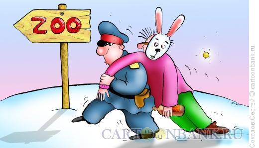 Карикатура: Животное, Соколов Сергей