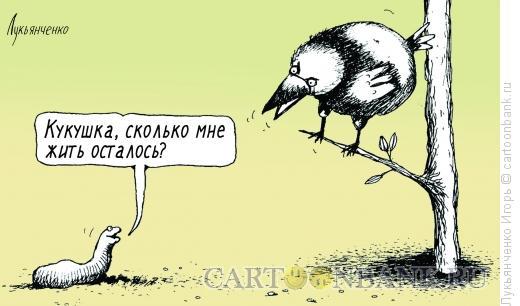 Карикатура: Кукушка и червяк, Лукьянченко Игорь
