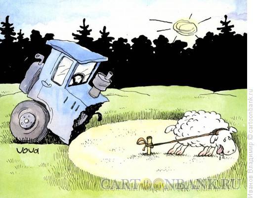 Карикатура: Голодная овечка, Иванов Владимир