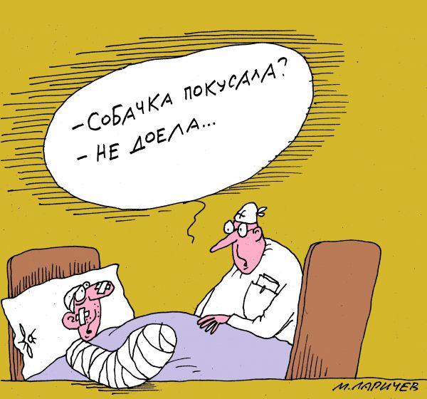 Карикатура: собачка, михаил ларичев