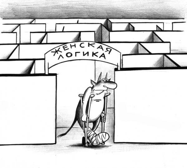 Карикатура: Женская логика, Сергей Корсун