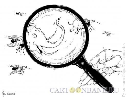 Карикатура: Слон из мухи, Лукьянченко Игорь