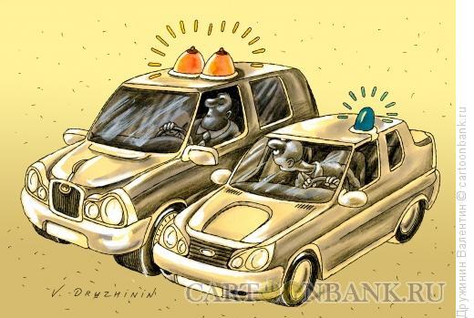 Карикатура: Мигалки, Дружинин Валентин