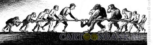 Карикатура: Борьба эволюций, Туровская Марина