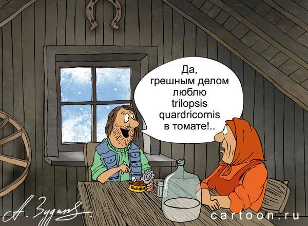 Карикатура: .профи, Зудин Александр