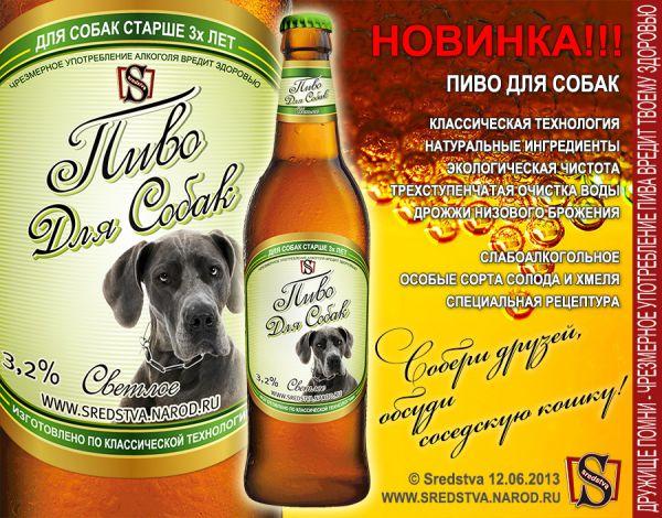 pivo-dlya-sobak.jpg