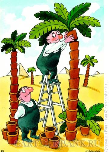 Карикатура: Озеленение, Дружинин Валентин