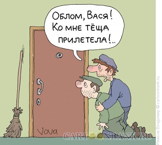Карикатура: Теща прилетела, Иванов Владимир