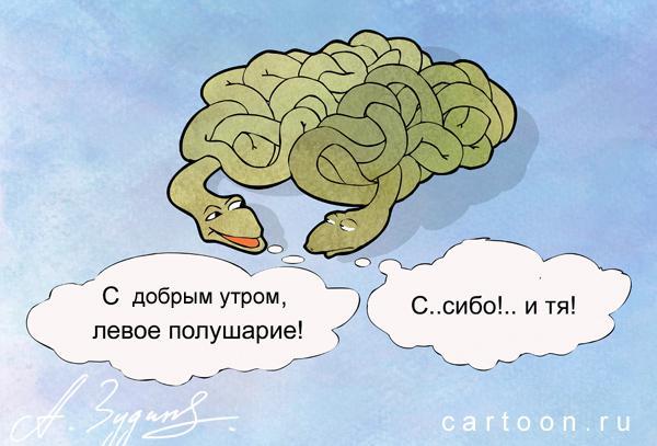 Карикатура: Извилины, Зудин Александр