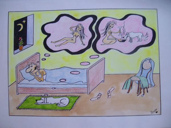 Карикатура: сон холостяка, Петров Александр