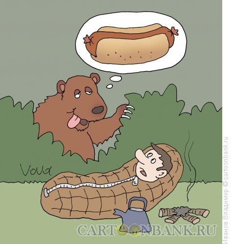 http://www.anekdot.ru/i/caricatures/normal/13/6/8/xot-dog-dlya-medvedya.jpg