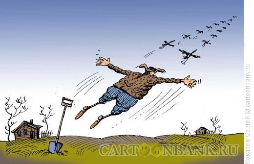 Карикатура: В косяке, Кокарев Сергей