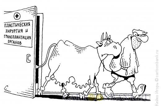 Карикатура: Экспериментатор, Кийко Игорь