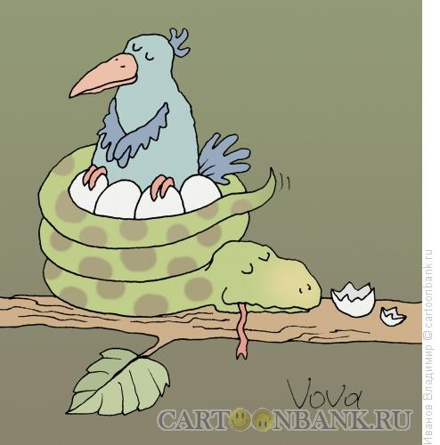 Карикатура: Гнездо, Иванов Владимир