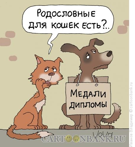 Карикатура: Медали и дипломы, Иванов Владимир