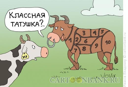 Карикатура: Тату для бычка, Иванов Владимир