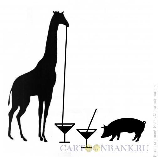 Карикатура: жираф, Копельницкий Игорь