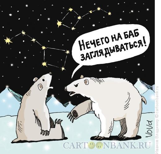 Карикатура: Медведицы, Иванов Владимир
