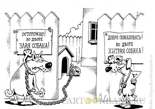 Карикатура: Хитрая собака, Кийко Игорь